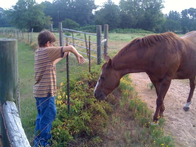 Cowboy and Cousin Emma's horse