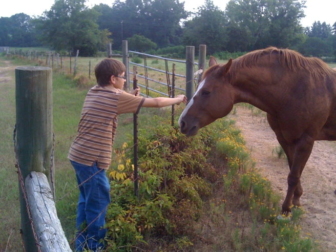 Making friends with Emma's horse